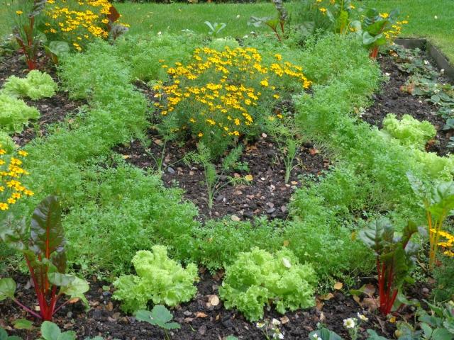 garden shape